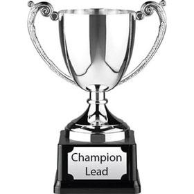 Champion1